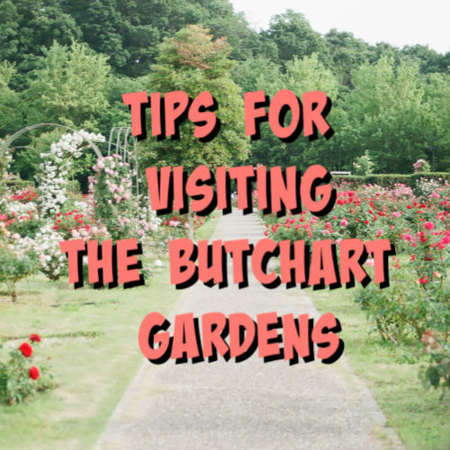 tips for visiting the butchart gardens