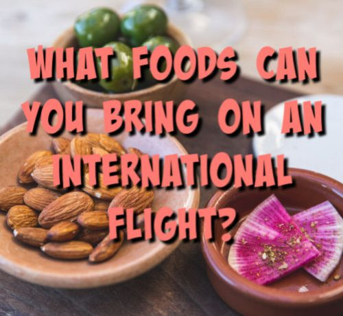 foods to bring on an international flight