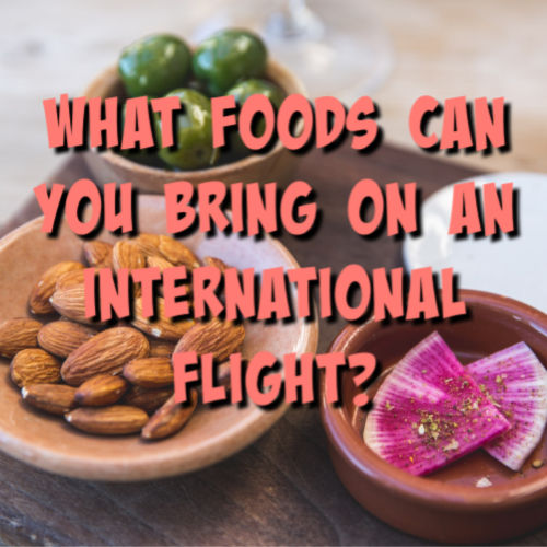 foods to bring on an international flight