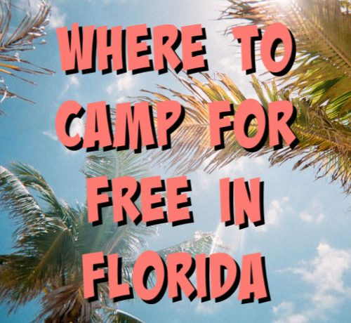 where to camp for free in florida text
