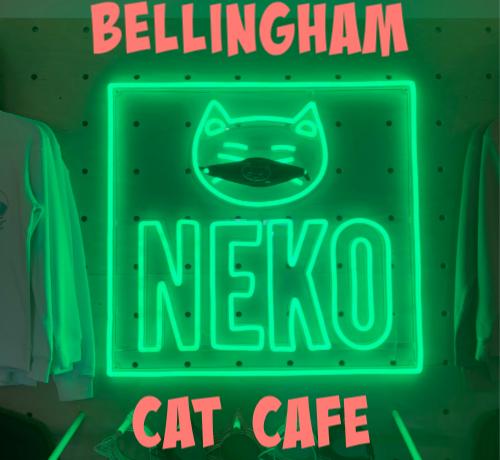 neko cat cafe neon sign