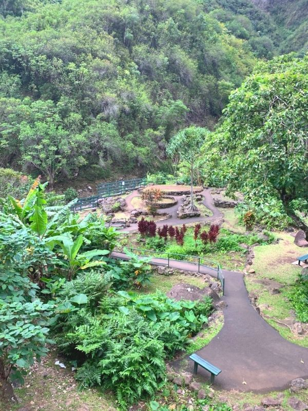 garden area at Iao Valley state park.