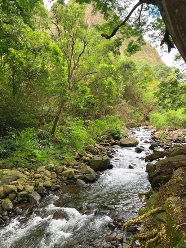 River rushing through the Iao Valley.