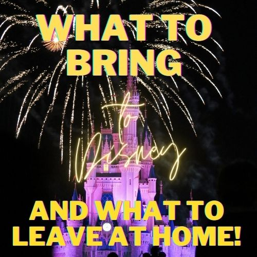 what not to bring to disney